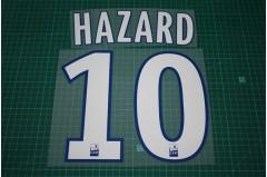Lille 11/12 #10 HAZARD Homekit Nameset Printing