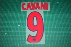 PSG 13/14 #9 CAVANI UEFA Champions League Awaykit Nameset Printing