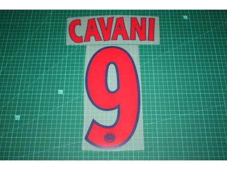 PSG 13/14 #9 CAVANI Champions League Awaykit Nameset Printing