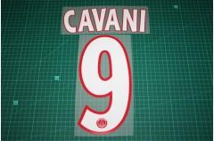 PSG 13/14 #9 CAVANI UEFA Champions League Homekit Nameset Printing