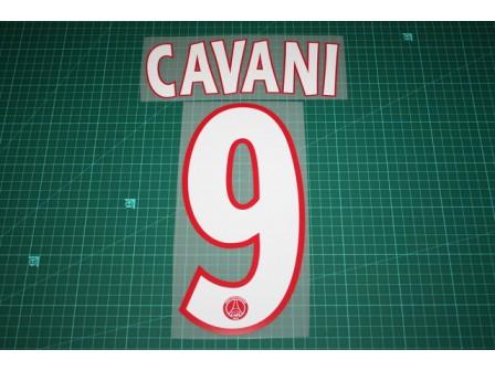 PSG 13/14 #9 CAVANI Champions League Homekit Nameset Printing