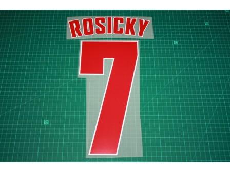 Arsenal 13/14 #7 ROSICKY AwayKit Nameset Printing